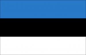 Estonian Translation Services